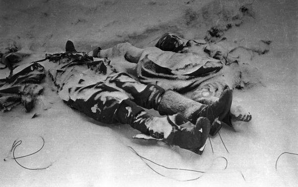 Người thiệt mạng trên chiến địa ngoại vi Stalingrad - Sputnik Việt Nam