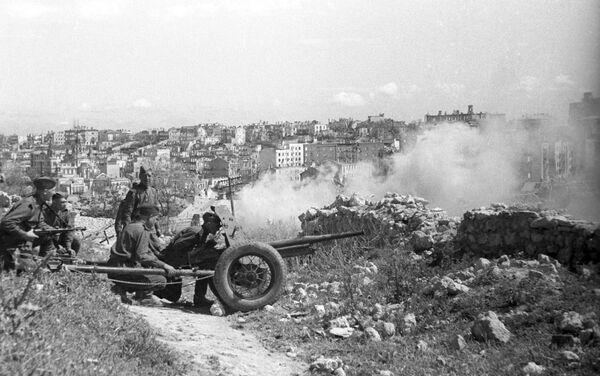 Tháng 5 năm 1944, ngoại ô Sevastopol. Những đòn đánh cuối cùng vào kẻ thù - Sputnik Việt Nam