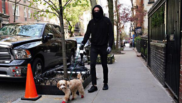 Người đàn ông đeo khẩu trang với con chó ở New York - Sputnik Việt Nam