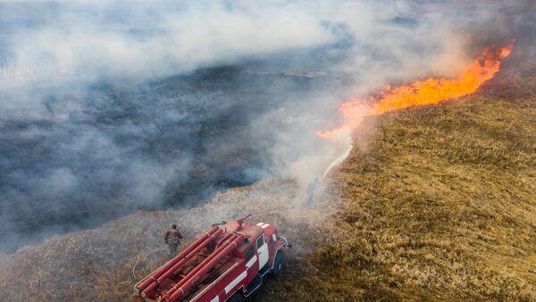 Hỏa hoạn trong khu vực cấm gần Chernobyl - Sputnik Việt Nam
