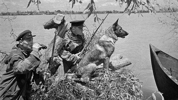 Bộ đội biên phòng quan sát tại khu vực làng Vilkovo, đồng bằng sông Danube - Sputnik Việt Nam