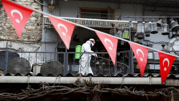 Các hoạt động khử trùng coronavirus ở Istanbul - Sputnik Việt Nam