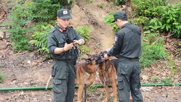 Lực lượng chức năng cho chó nghiệp vụ uống nước - Sputnik Việt Nam