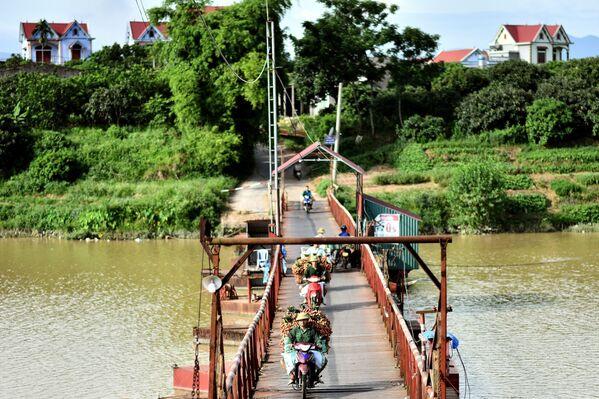Nông dân Việt Nam chở vải thiều ra chợ - Sputnik Việt Nam