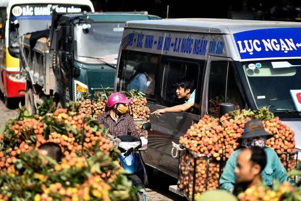 Nông dân Việt Nam bán vải thiều ngoài chợ - Sputnik Việt Nam