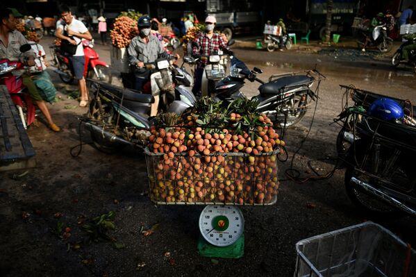 Bán vải thiều tại một chợ ở Việt Nam - Sputnik Việt Nam