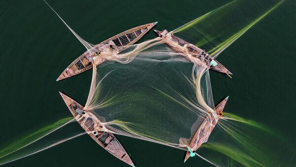 Tác phẩm của nhiếp ảnh gia Abdul Momin Câu cá ở Jamun - Sputnik Việt Nam