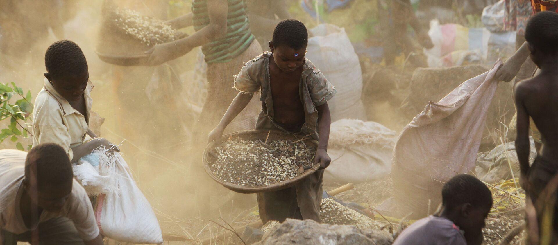 Phụ nữ và trẻ em thu hoạch ngũ cốc ở Malawi. - Sputnik Việt Nam, 1920, 14.08.2020