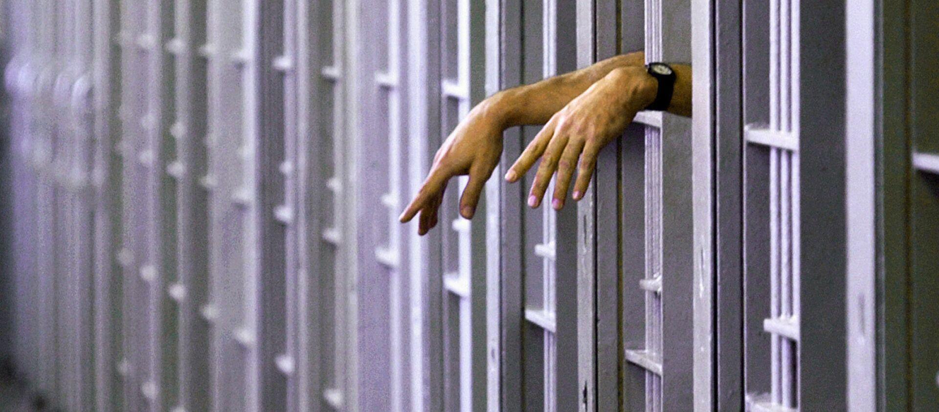Bị kết án tử hình trong một nhà tù an ninh tối đa ở Pontiac, Hoa Kỳ - Sputnik Việt Nam, 1920, 03.01.2021