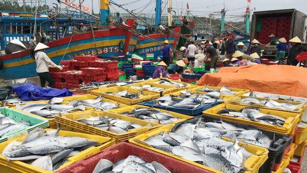 Nhiều nghị quyết giúp các địa phương ở Nghệ An phát triển kinh tế. - Sputnik Việt Nam