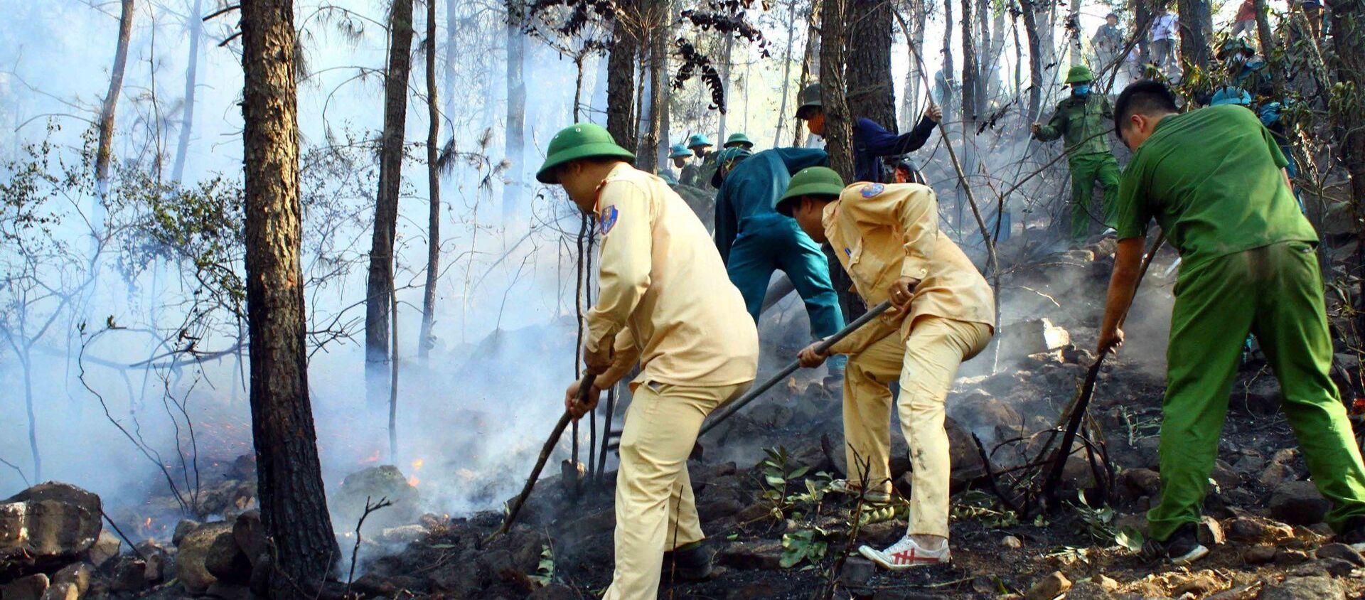 Các lực lượng chức năng nỗ lực dập lửa tại xã Diễn Lợi, huyện Diễn Châu (Nghệ An). - Sputnik Việt Nam, 1920, 28.06.2020