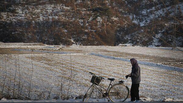 Nữ cư dân Triều Tiên trên cánh đồng tuyết - Sputnik Việt Nam