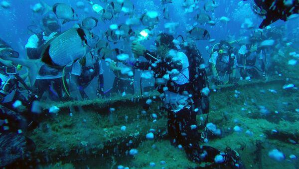 Những người thợ lặn bên con tàu đắm - Sputnik Việt Nam